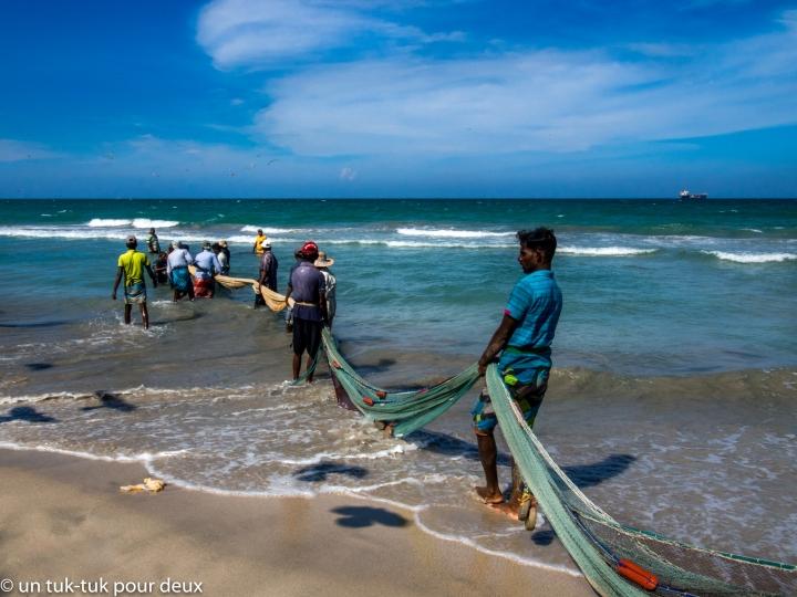Trincomalee: farniente, pêche de plage et petits airs deGoa!