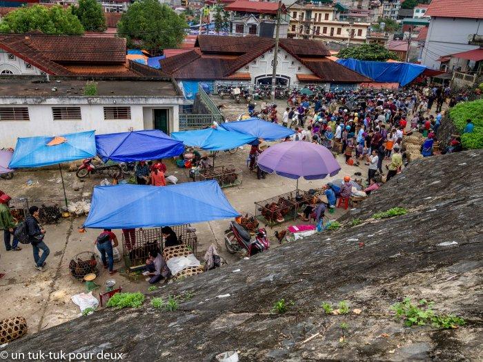 Vue d'ensemble du marché aux animaux de Bac Ha