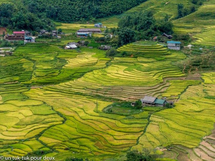 Quand les rizières nousterrassent!