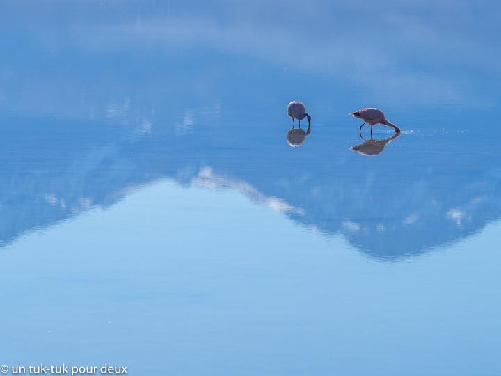 Parque nacional Nevado de Tres Cruces, une autre merveille duChili