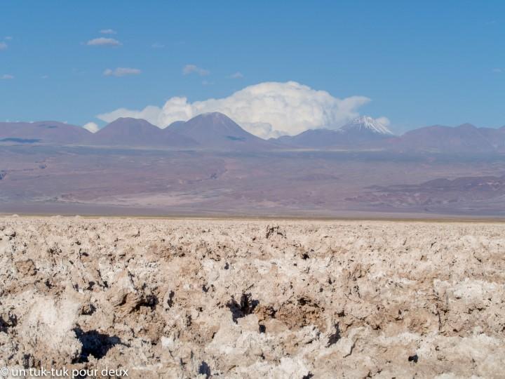 San Pedro de Atacama : des pétroglyphes, un arc-en-ciel raté, un rio et desplumes