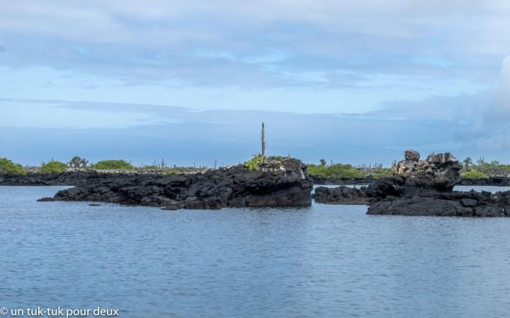 Galápagos : Plongée libre à LosTuneles